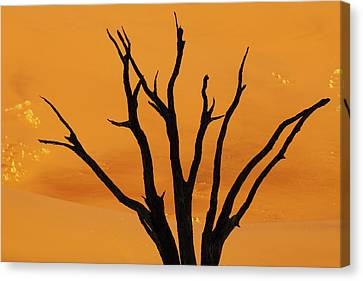 Silhouette Of Dead Tree Against Sand Canvas Print by Jaynes Gallery