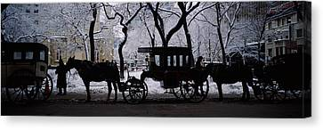 Silhouette Of Horse Drawn Carriages Canvas Print