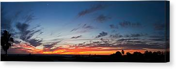 Baja California Canvas Print - Silhouette Of Trees At Sunset, Todos by Panoramic Images