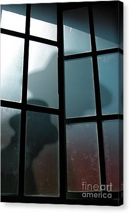Silhouette On Window Canvas Print by Carlos Caetano
