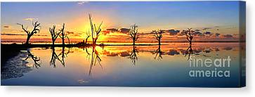 Silhouetted Sential Sunset Canvas Print by Bill  Robinson