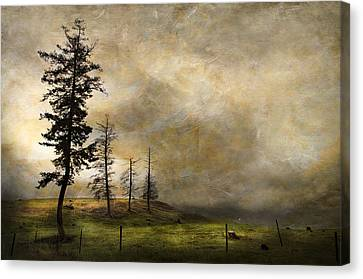 Silhouettes In The Storm Canvas Print