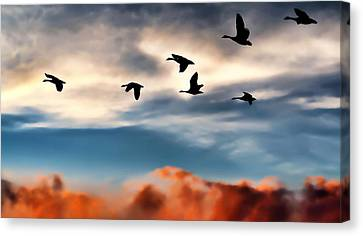 Geese Canvas Print - Silhouettes by Jeff S PhotoArt