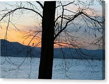 Silhouettes Canvas Print