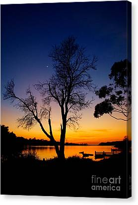 Canvas Print featuring the photograph Silhouettes by Trena Mara