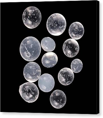 Silica Canvas Print - Silica Gels Balls by Science Photo Library