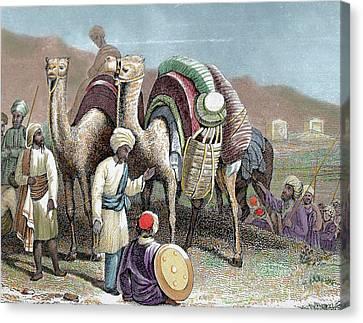 Silk Road Caravan Of Camels Resting Canvas Print by Prisma Archivo
