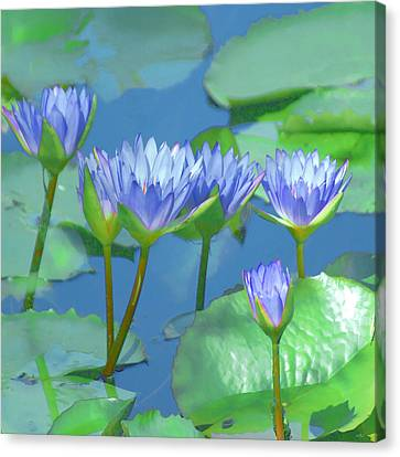 Canvas Print featuring the photograph Silken Lilies by Holly Kempe