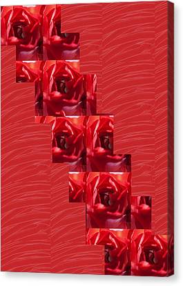Canvas Print featuring the photograph Silken Red Sparkles Redrose Across by Navin Joshi