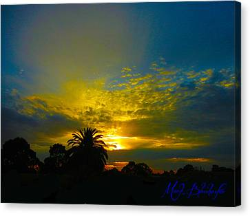 Silken Sunset Canvas Print