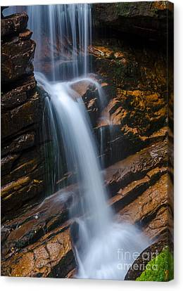 Canvas Print featuring the photograph Silky Smooth by Mike Ste Marie