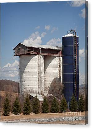 Canvas Print featuring the photograph Silo House With A View - Color by Carol Lynn Coronios