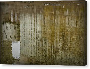 Silo Reflection Canvas Print by Eric Soucy