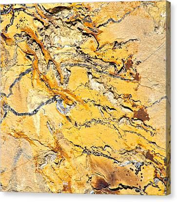 Siltstone Abstract Canvas Print by Karon Melillo DeVega