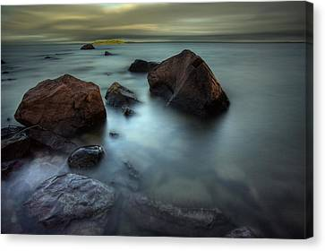 Silver And Gold Canvas Print by Jakub Sisak