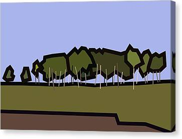 Silver Birch Canvas Print by Kenneth North