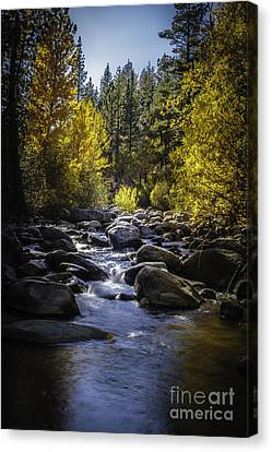 Silver Creek Canvas Print by Mitch Shindelbower