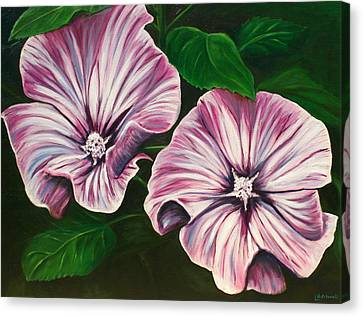 Silver Cup - Lavatera Canvas Print by Lyndsey Hatchwell