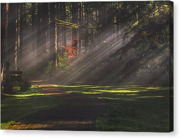 Silver Falls Historic District Canvas Print by Mark Kiver