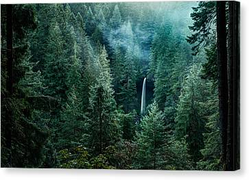 Canvas Print featuring the photograph Silver Falls State Park by Brian Bonham
