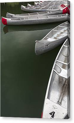 Silver Fish I Canvas Print by Jon Glaser
