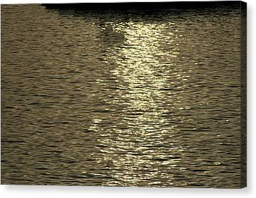 Silver Moonlight Canvas Print - Silver Moonlight Across The Water by Phoenix De Vries