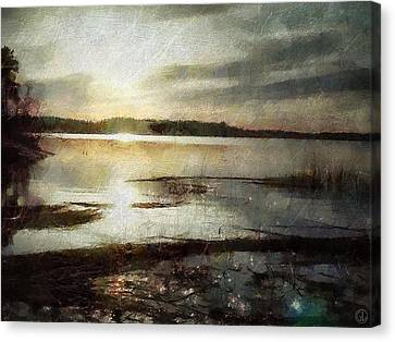 Silver Morning Canvas Print by Gun Legler