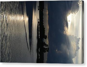 Silver Reflections Canvas Print by Adam Panek