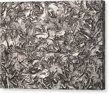 Silver Streak Canvas Print by Alan Casadei