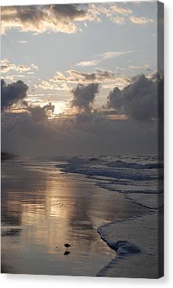 Silver Sunrise Canvas Print