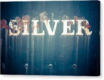 Silver Canvas Print by Takeshi Okada