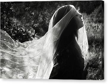 Ghost Canvas Print - Silver Veil by Cambion Art