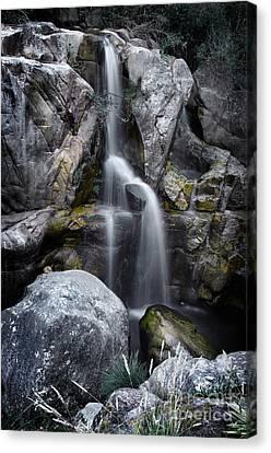 Silver Waterfall Canvas Print by Carlos Caetano