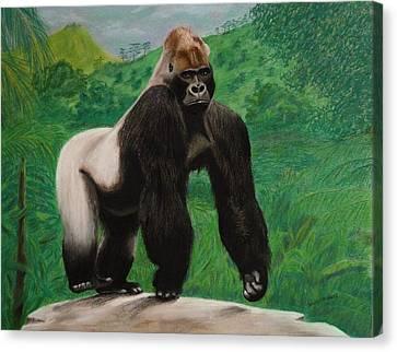 Silverback Gorilla Canvas Print by David Hawkes