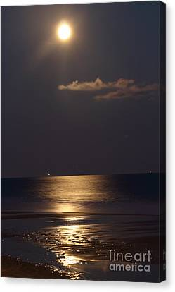 Silver Moonlight Canvas Print - Silvered Sea by Frances Marian Lewis