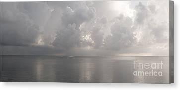 Silvern Sea Canvas Print