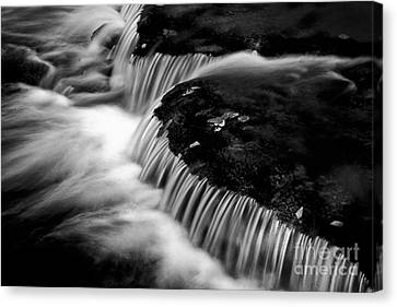Silvery Falls Canvas Print