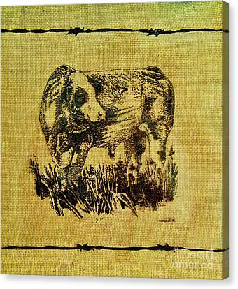 Canvas Print featuring the drawing Simmental Bull 12 by Larry Campbell