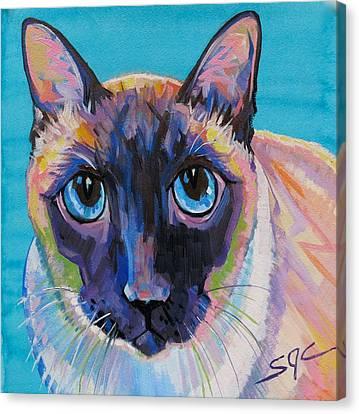 Simon The Siamese Canvas Print
