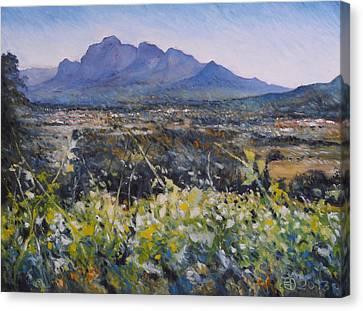 Simonsberg Cape Town South Africa Canvas Print by Enver Larney