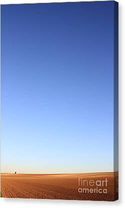 Simple Landscape #1 Canvas Print by Pixel Chimp