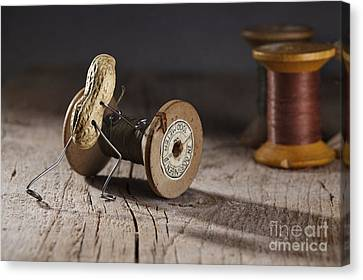 Simple Things - Rolling The Thread Canvas Print by Nailia Schwarz