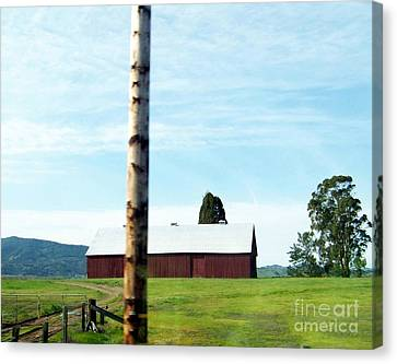 Canvas Print featuring the photograph Simplicity by Bobbee Rickard