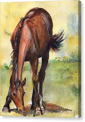 Bay Horse Canvas Print - Horse Grazing Simplicity  by Maria's Watercolor