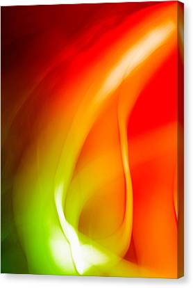 Simplicity Of Motion Canvas Print by Tom Druin