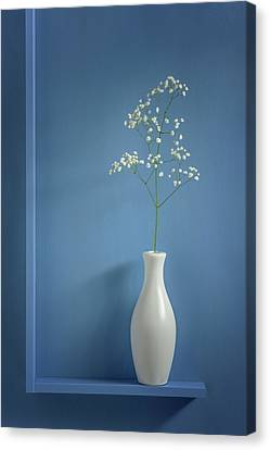 Shelf Canvas Print - Simplicity by Stephen Clough