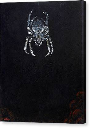 Simply Spider Canvas Print by Cara Bevan