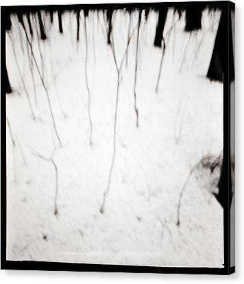 Simulacrum -11.2 Canvas Print by Alex Zhul