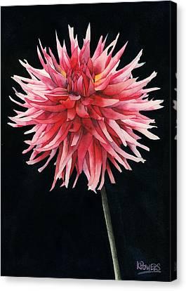 Single Dahlia Canvas Print by Ken Powers