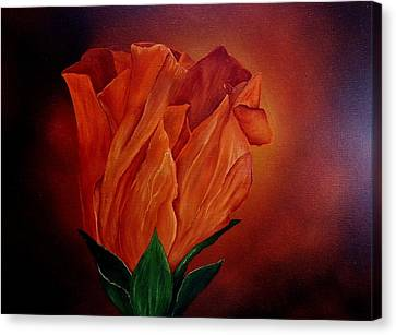 Single Rose Canvas Print by Valorie Cross
